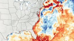 Sea Surface Temperature Anomaly July 2020