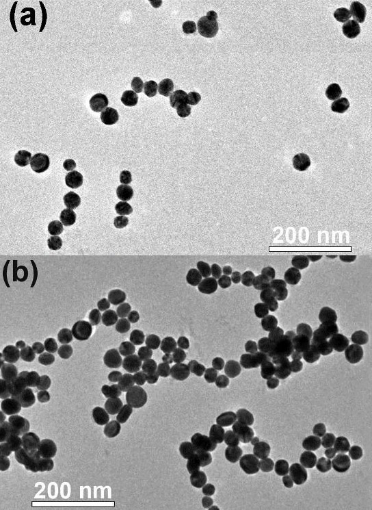 Self Assembling Gold Nanoparticles