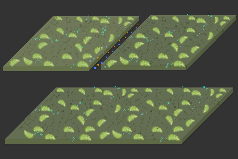 new polymer material uses carbon dioxide to self repair