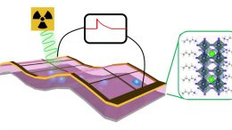 Self-Powered Perovskite X-ray Detector