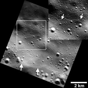 Shrinking Mercury is Active After All