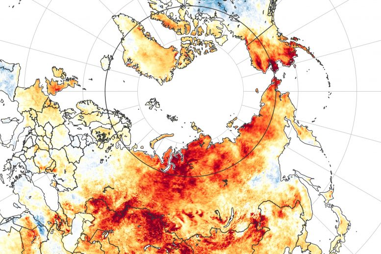 Siberia Land Surface Temperature Anomaly 2020