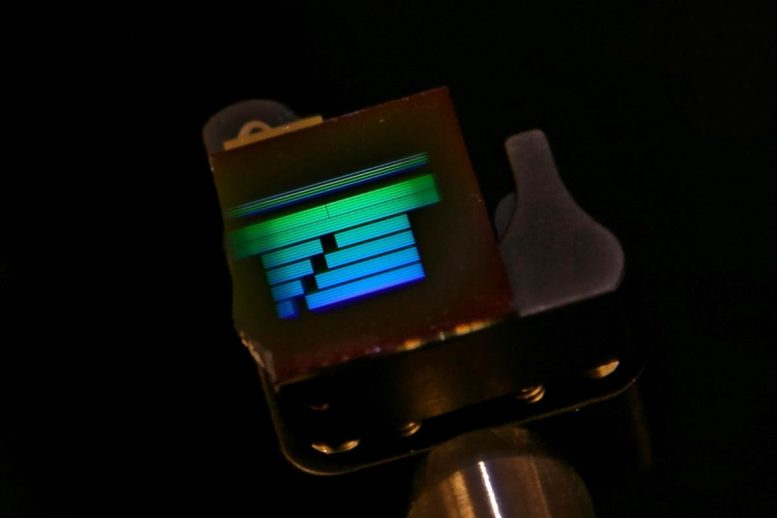 Silicon Test Chip With High Contrast Grating Waveguides