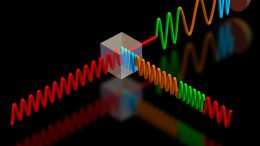 Single-Photon Detection Used for Feedback