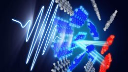 Singlet Exciton Fission Process