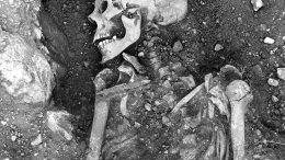Smallpox-Infected Viking Skeleton