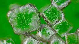 Sodium Chloride Crystals Microscopic View