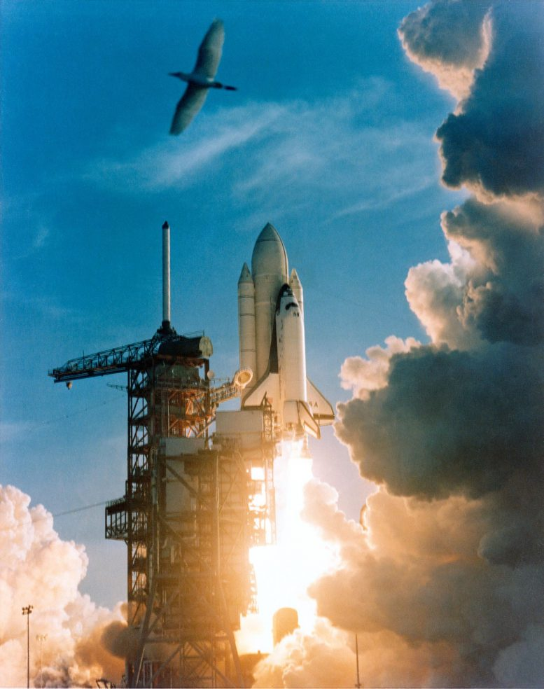 Space Shuttle Columbia Launch