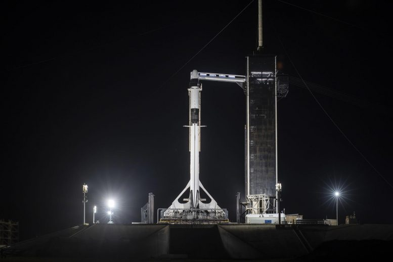 SpaceX Falcon 9 Rocket With Dragon Capsule
