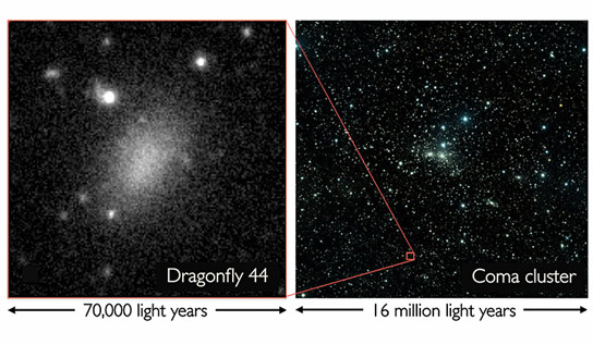 Spectroscopic Confirmation of the Existence of Large, Diffuse Galaxies in the Coma Cluster