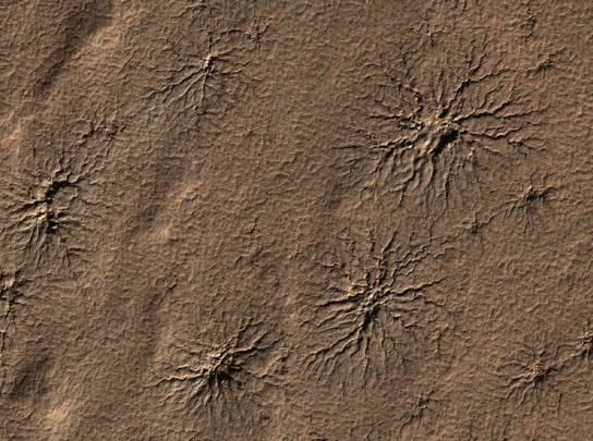 Spider-shaped-features-in-the-south-polar-region-of-Mars