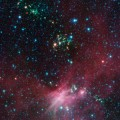 Spitzer Views Newborn Stars in the Milky Way