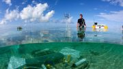 Stanford researchers help predict the oceans of the future