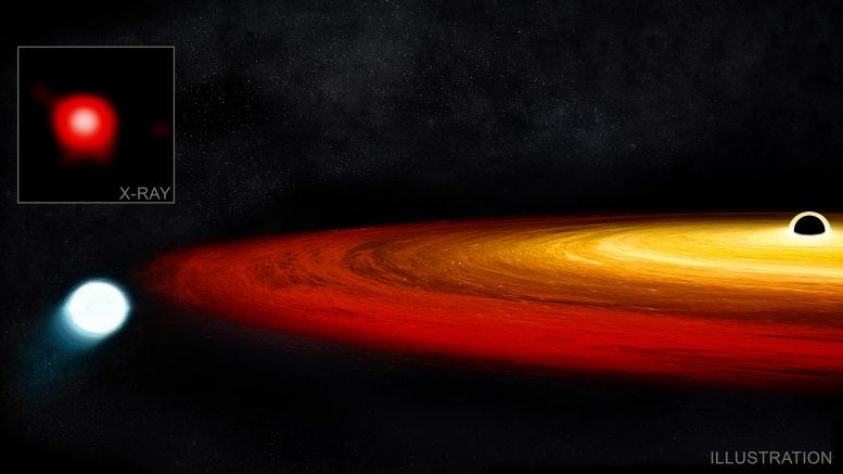Star Survives Supermassive Black Hole
