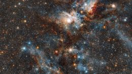 Stars vs Dust in the Carina Nebula
