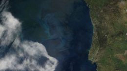 Stimulating Ocean Phytoplankton Growth to Reduce Global Warming