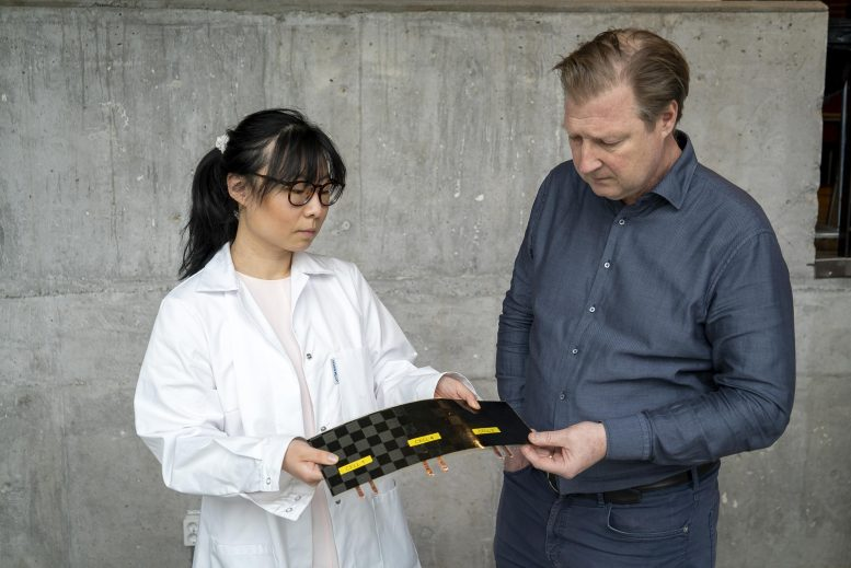 Structural Battery With Record Performance