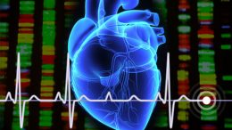 Study Identifies New Gene Variants for Treating Arrhythmia