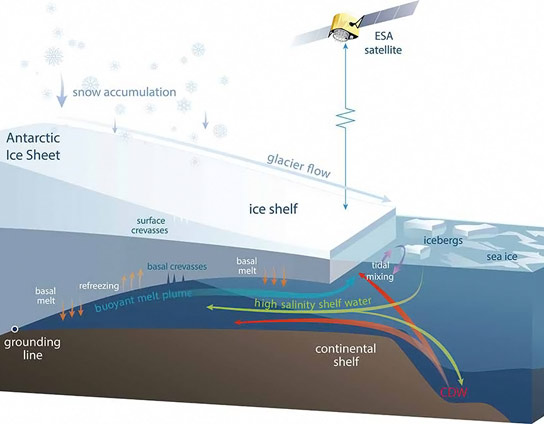 Study Shows Antarctic Ice Shelves Rapidly Thinning