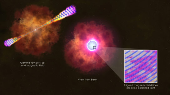 Study of Gamma Ray Bursts Afterglow Surprises Scientists