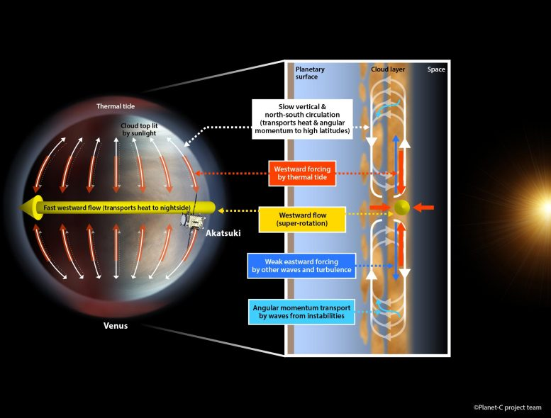 Proposed System that Maintains the Super-Rotation of Venus' Atmosphere