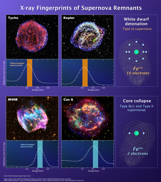 Suzaku Reveals Distinction Between Massive Stars and White Dwarfs