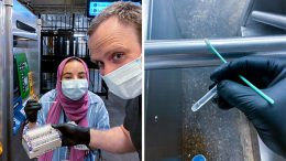 Swabbing for Microbes in the NYC Subway System