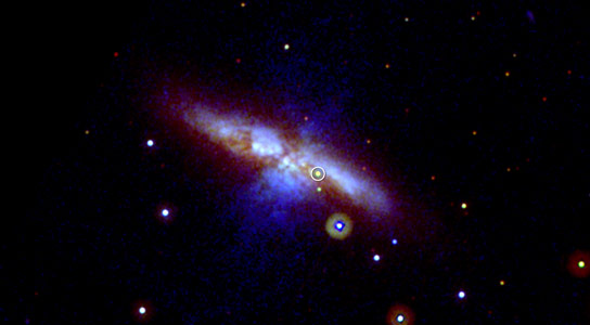 Swifts UVOT Views a New Supernova