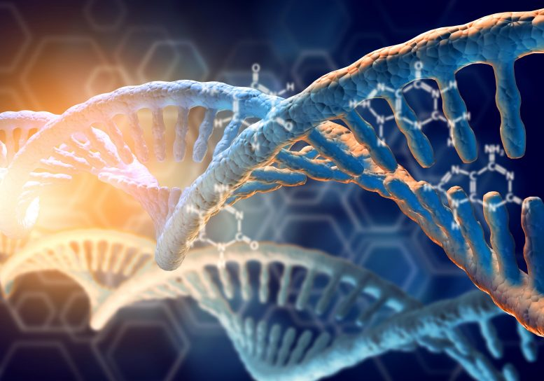 Synthetic DNA