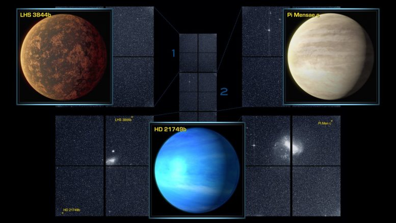 TESS Rounds Up its First Planets, Snares Far flung Supernovae