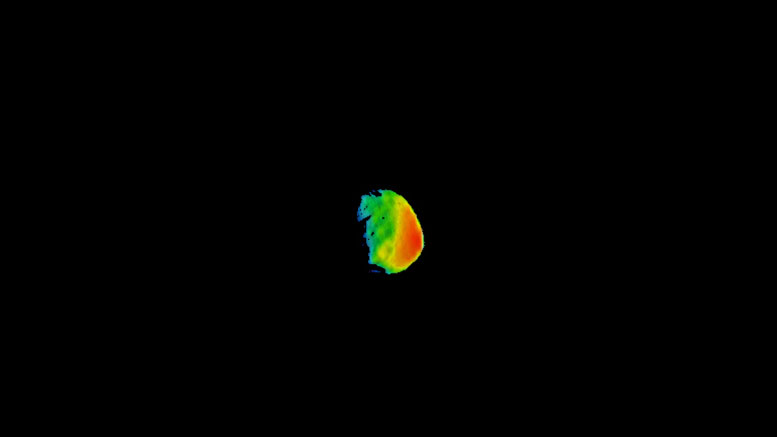 THEMIS Camera Shows Mars' Moon Phobos in a Different Light