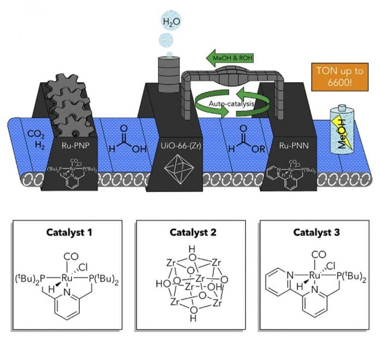 Tandem Catalytic System