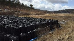 Temporary Storage Fukushima Contaminated Soil