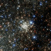 The Densest Known Star Cluster in the Milky Way