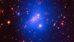 The Evolution of Massive Galaxy Clusters