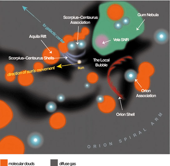The Local Bubble and the Galactic Neighborhood