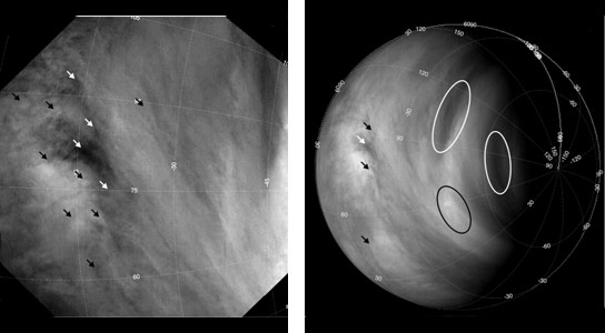 The Winds of Venus are Getting Faster