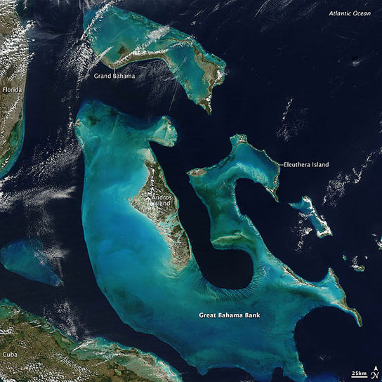 The islands of the Bahamas and their fossil cliffs contain clues to sea-level rise