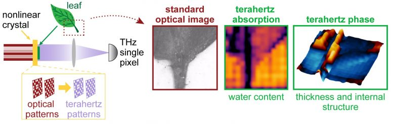 Time-Resolved Nonlinear Ghost Imaging Camera