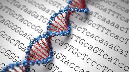 Tiny DNA Modification Has Big Impact on Tumors