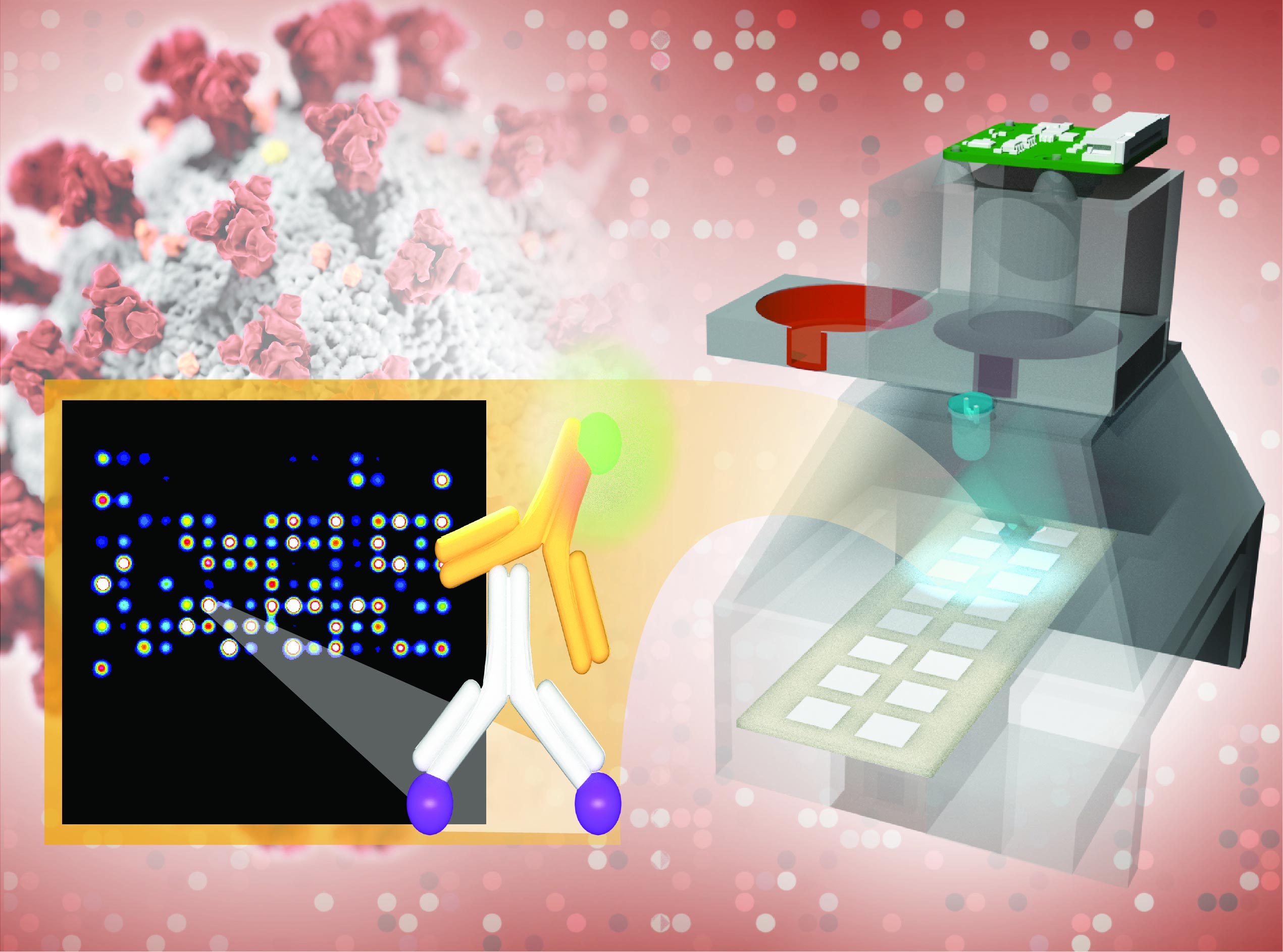 New Low-Cost, Accurate COVID-19 Antibody Detection Platform Developed