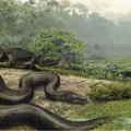 Titanoboa, the 40-Foot-Long Snake