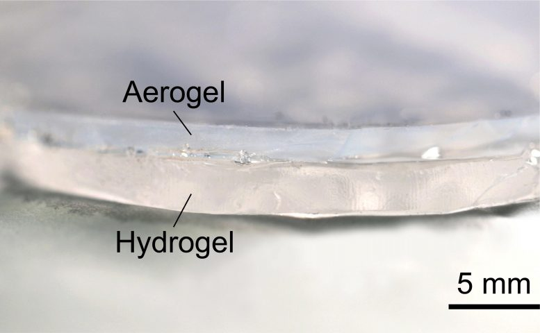 Transparent Hydrogel-Aerogel Cooling Bilayer