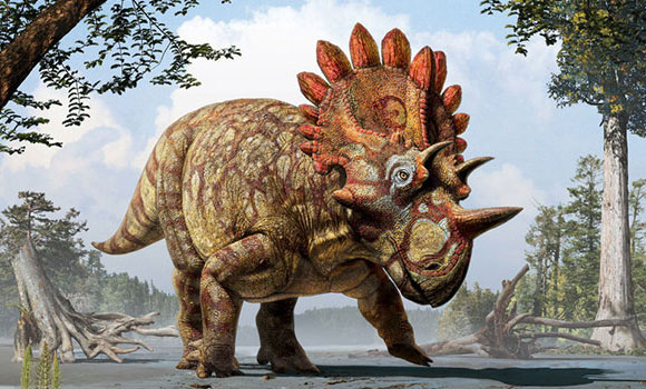 Triceratops Had a Relative Named Hellboy