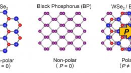 Tungsten Selenide and Black Phosphorus