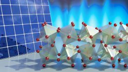 Twisting Molecules Halide Perovskites
