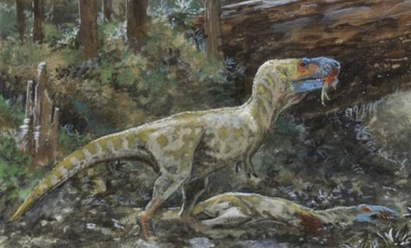 Tyrannosaurs Were Most Likely Cannibals