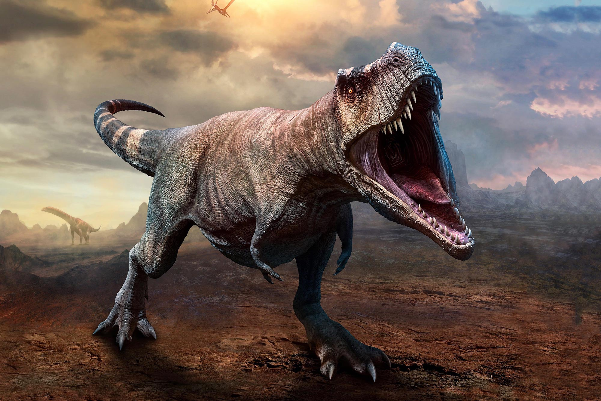 """Growth Rings From Fossil Bones Reveals T. rex Had Huge Growth Spurts, but Other Dinosaurs Grew """"Slow and Steady"""" - SciTechDaily"""