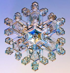 Unlocking the Secrets of Snowflakes' Shapes