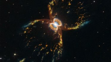 Hubble Reveals Amazing New View of the Southern Crab Nebula